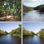 Canals, Waterways, Etc photographs