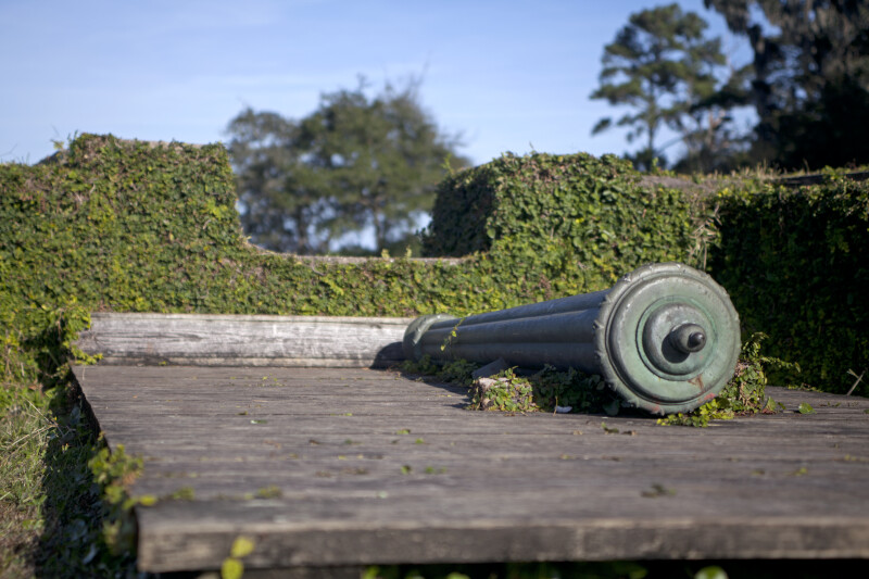 Cannon on a Wooden Firing Step Resting Behind a Wall of Vegetation