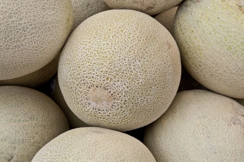 Cantaloupe at Haymarket Square