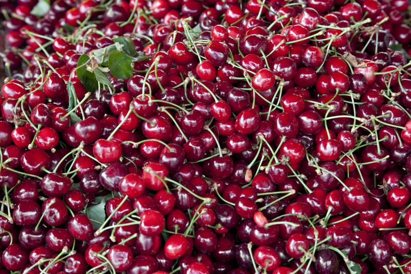 Cherries Close-Up