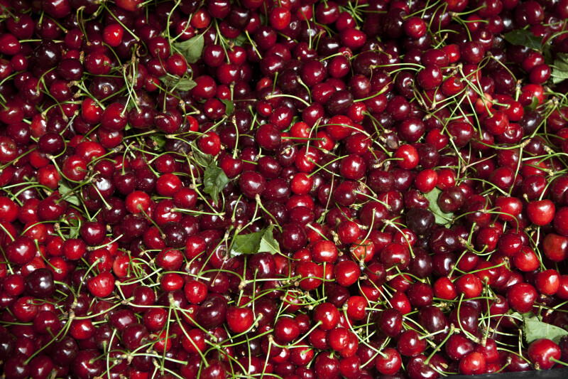 Cherries with Long, Green Stems