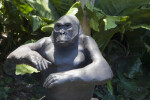 Close-Up of a Bronze Gorilla