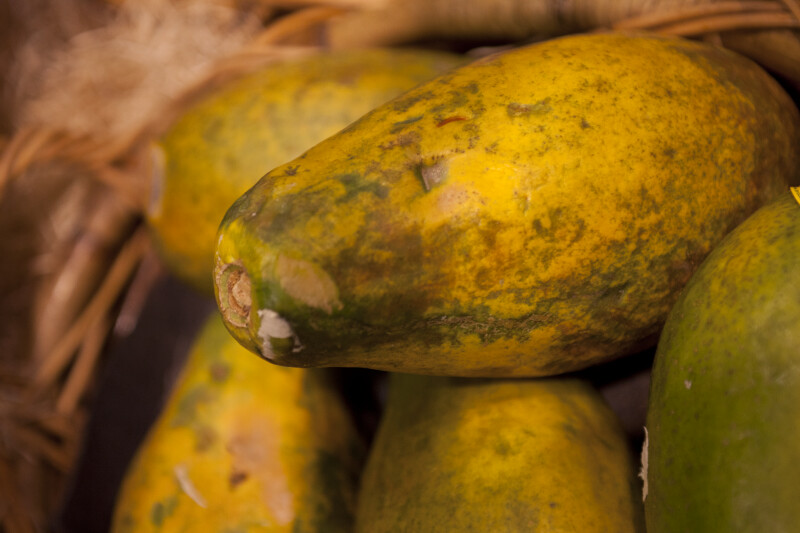 Close-up of a Papaya