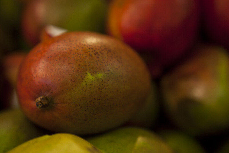 Close-up of Mango