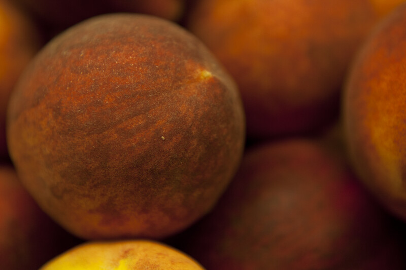 Close-up of Peach