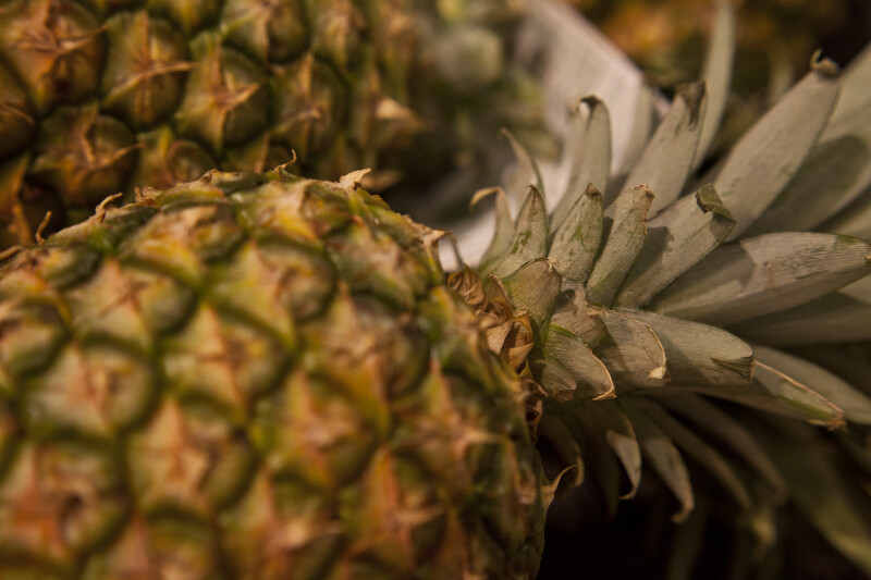 Close-up of Pineapple