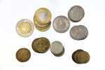 Close-up of Polish Coins