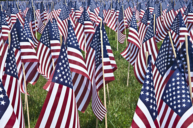Close-Up Photo of American Flags