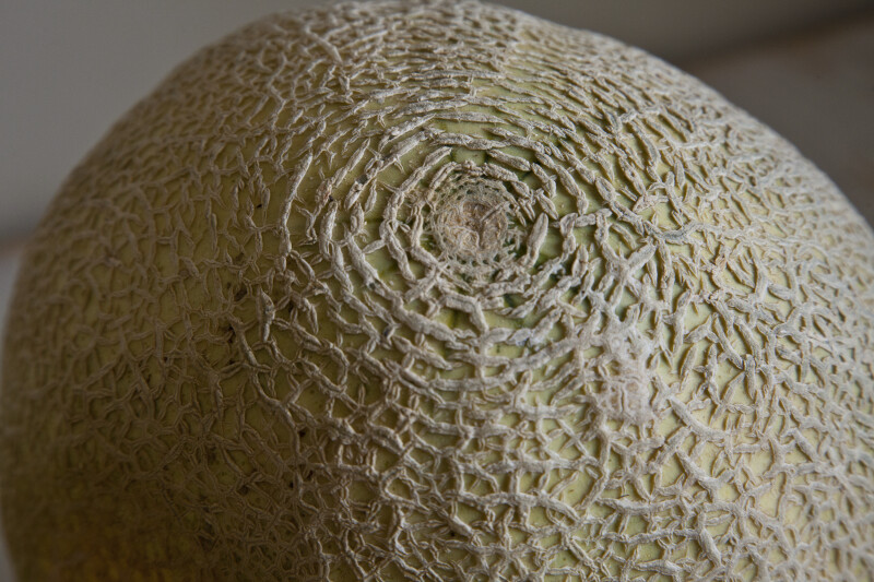Close-Up View of a Ripe Cantaloupe