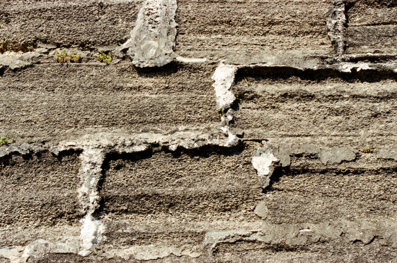 Close-Up View of Coquina which Forms the Walls of Castillo de San Marcos