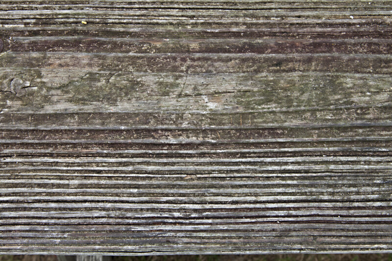 Close-Up View of Lines on a Wood Panel