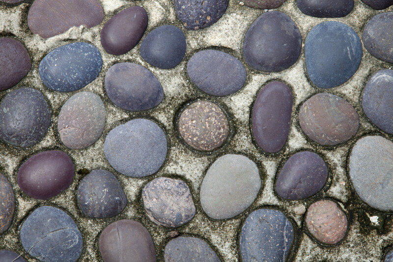 Cobblestone Pavement at the Kanapaha Botanical Gardens
