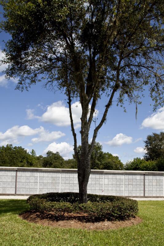 Columbarium Trees