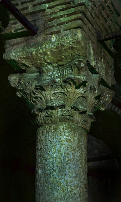 Columns Covered in Specs of Green Algae at the Basilica Cistern