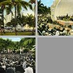 Concerts & Performances photographs