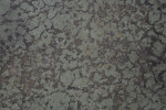 Concrete Floor with Reticulated Pattern