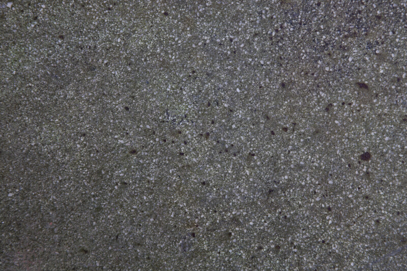 Concrete Floor with Tiny White Aggregate