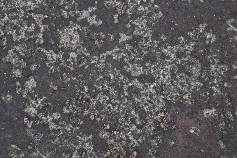 Concrete Slab with Weathered Paint