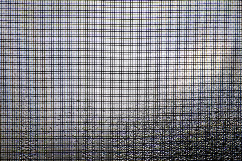 Condensation on a Window Screen