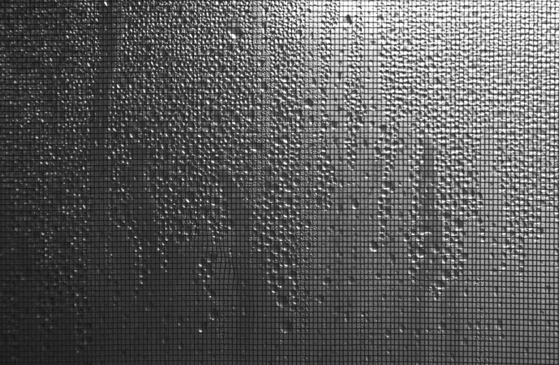 Condensation on a Window with Screen