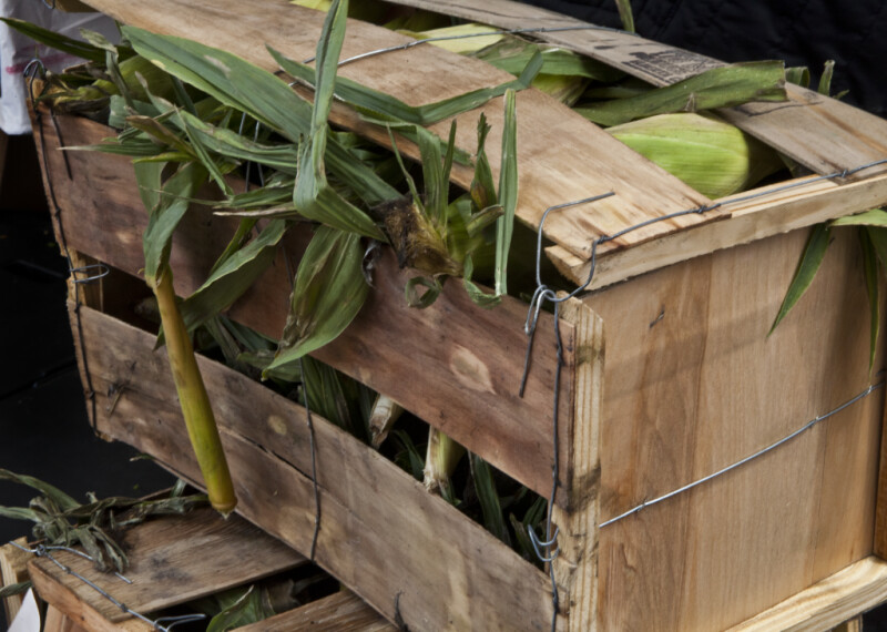 Corn in a Wooden Box at Haymarket Square