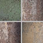 Cracked Paint photographs