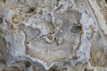 Cracked, Rough Surface of a Porous Rock