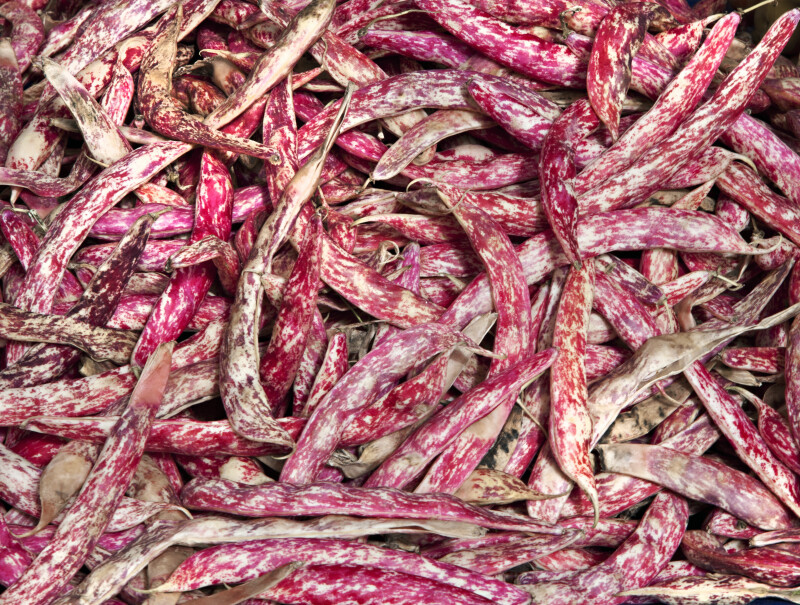Cranberry Beans at an Outdoor Market in Kusadasi