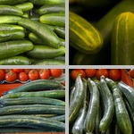 Cucumbers photographs