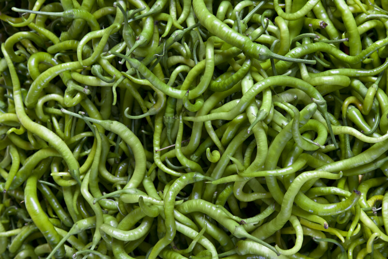 Curly, Green Chilies