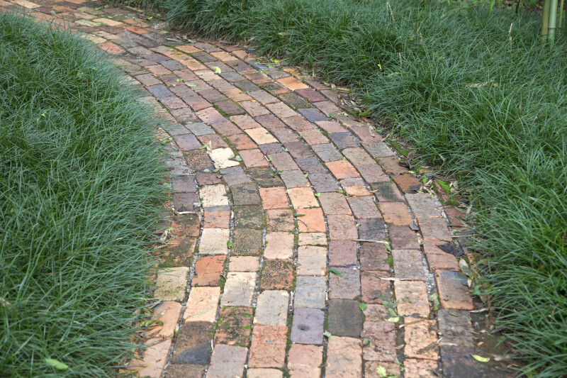 Curved Brick Walkway at the Kanapaha Botanical Gardens