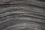 Curving Grain in Gray Wood