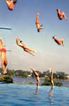 Cypress Gardens Divers