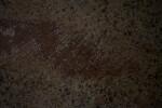 Dark Brown Floor with Flecks of Black
