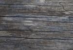 Dead, Cracking Wood