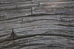 Dead Wood Splitting