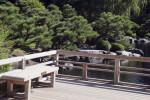 Deck at Japanese Garden