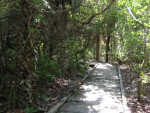 Delnor Wiggins Pass Boardwalk