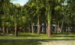 DeSoto Park