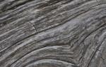 Diagonal Pattern in the Grain of Dead Wood