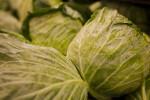 Display of Lettuce