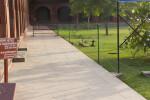 Dog Inside the Taj Mahal Grounds