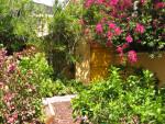 Door in Garden