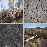 Drought photographs