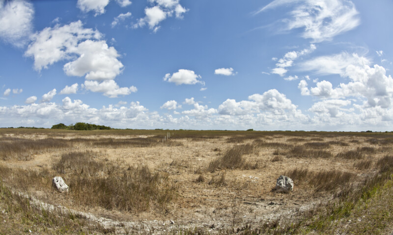 Dry Field at Shark Valley of Everglades National Park