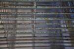Drying Racks in a print shop.