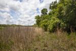 Eastern Edge of May's Prairie