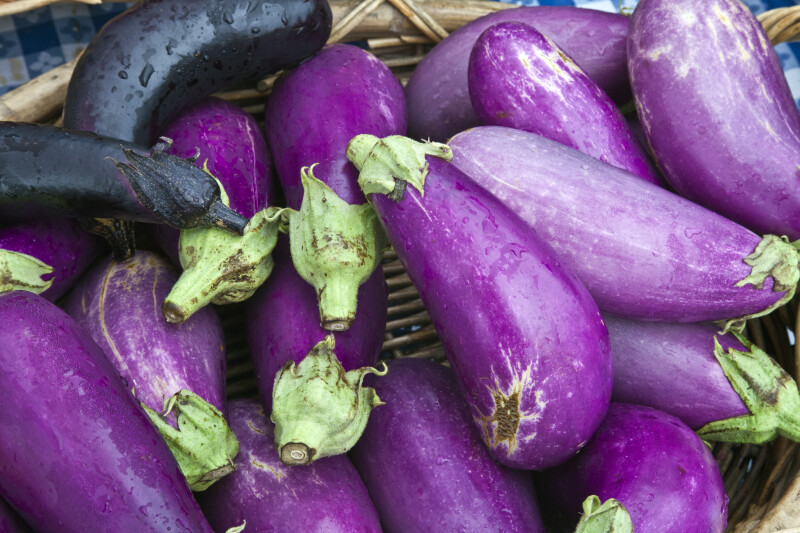 Eggplant in Monroeville, PA