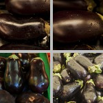Eggplants photographs