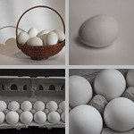 Eggs photographs